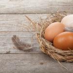 eggs_banner